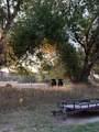 1433 Lake Gulch Road - Photo 30