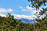 31451 Upper Bear Creek Road - Photo 15