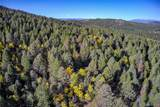 13000 Powhatan Trail - Photo 3