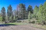 13000 Powhatan Trail - Photo 8