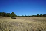 10 Bulldogger Drive - Photo 1