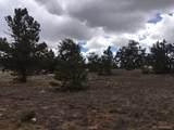 002 Guipago Trail - Photo 2
