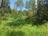 1 Weaver Spur - Photo 3