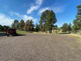 12591 Antelope Trail - Photo 29