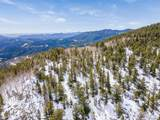 1695 Packsaddle Trail - Photo 8