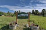 26054 Centennial Trail - Photo 35