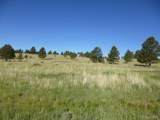 27095 Pine Vista Circle - Photo 1