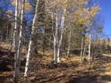 711 Crooked Rock Path - Photo 1