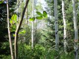 30450 Elk Lane - Photo 14