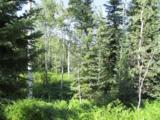 30450 Elk Lane - Photo 7