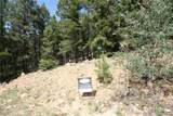Elk Mountain Trail - Photo 1