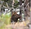 811 Nob Hill Trail - Photo 22
