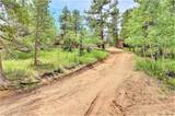 62 Phantom Creek Trail - Photo 11