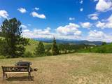 1251 Antelope Trail - Photo 2