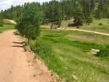 1251 Antelope Trail - Photo 3