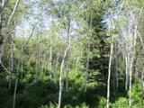30450 Elk Lane - Photo 11