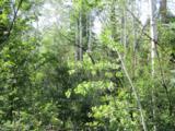 30450 Elk Lane - Photo 13
