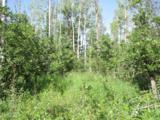 30450 Elk Lane - Photo 15