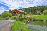 3305 Timbergate Trail - Photo 9