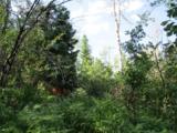 30450 Elk Lane - Photo 21