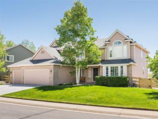 910 S Pitkin Avenue, Superior, CO 80027 (MLS #1540863) :: 8z Real Estate