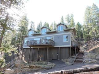 9899 Overlook Road, Sedalia, CO 80135 (MLS #1575785) :: 8z Real Estate