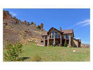 6433 Wauconda Drive, Larkspur, CO 80118 (MLS #1613638) :: 8z Real Estate