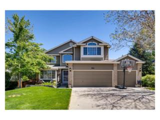 9921 S Silver Maple Road, Highlands Ranch, CO 80129 (MLS #1626033) :: 8z Real Estate