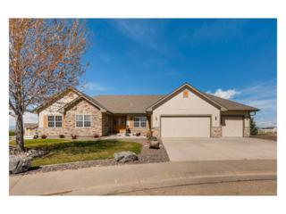 131 Appel Court, Fort Lupton, CO 80621 (MLS #1645507) :: 8z Real Estate