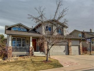9390 Prairie View Drive, Highlands Ranch, CO 80126 (#1686995) :: The Peak Properties Group
