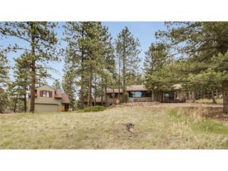 6248 S Skyline Drive, Evergreen, CO 80439 (MLS #1758552) :: 8z Real Estate