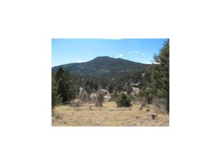 11958 Broken Arrow Drive, Conifer, CO 80433 (MLS #1777624) :: 8z Real Estate