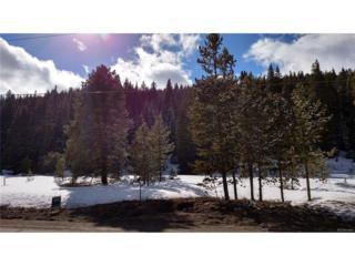 5891 Hwy 9, Blue River, CO 80424 (MLS #1832874) :: 8z Real Estate
