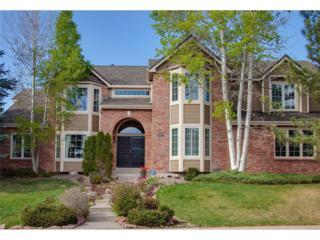 9687 Kemper Drive, Lone Tree, CO 80124 (#1859844) :: The Peak Properties Group
