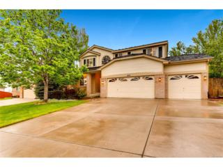 7453 Indian Wells Cove, Lone Tree, CO 80124 (MLS #1969227) :: 8z Real Estate