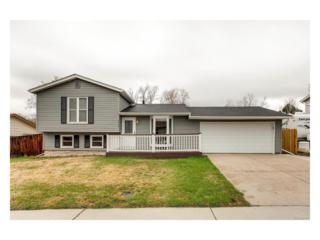 4439 S Alkire Street, Morrison, CO 80465 (#1999988) :: Thrive Real Estate Group