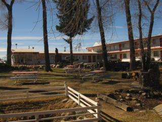428 Us Highway 24, Buena Vista, CO 81211 (#2020000) :: The Peak Properties Group