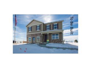 2264 Stonefish Drive, Windsor, CO 80550 (MLS #2041388) :: 8z Real Estate