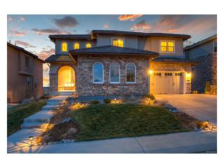 10706 Skydance Drive, Highlands Ranch, CO 80126 (#2138106) :: The Peak Properties Group