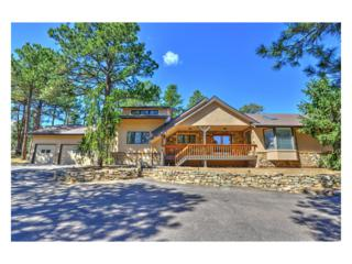 30821 Clubhouse Lane, Evergreen, CO 80439 (MLS #2176216) :: 8z Real Estate