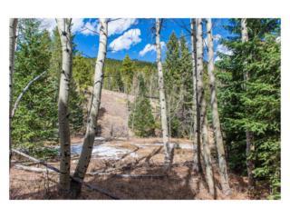 0 Cedar Road, Evergreen, CO 80439 (#2264161) :: The Peak Properties Group