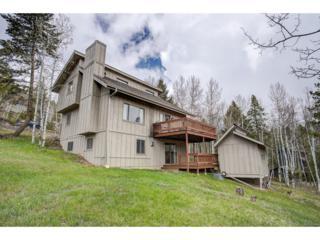 7136 Aspen Meadow Drive, Evergreen, CO 80439 (#2296880) :: The Peak Properties Group