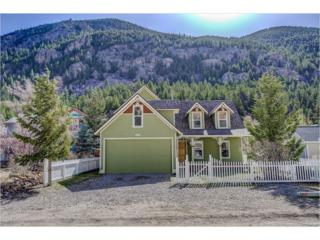 1438 Marion Street, Georgetown, CO 80444 (MLS #2350214) :: 8z Real Estate