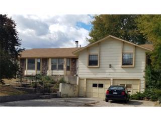 5335 Newton Street, Denver, CO 80221 (MLS #2410076) :: 8z Real Estate