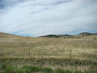 Haskel Creek Road, Larkspur, CO 80118 (MLS #2490138) :: 8z Real Estate