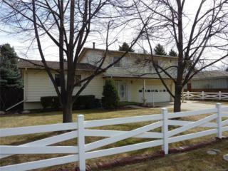 2840 Alkire Street, Golden, CO 80401 (#2522184) :: The Peak Properties Group