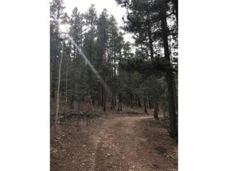 00 Miners Candle Roads, Idaho Springs, CO 80452 (MLS #2587263) :: 8z Real Estate