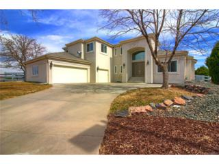 38 Falcon Hills Drive, Highlands Ranch, CO 80126 (MLS #2648121) :: 8z Real Estate