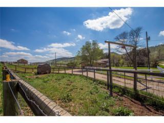 7800 Lela Lane, Loveland, CO 80538 (MLS #2716189) :: 8z Real Estate