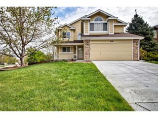 709 Redwood Court, Highlands Ranch, CO 80126 (#2752460) :: The Peak Properties Group
